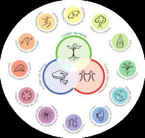 12 principios da permacultura